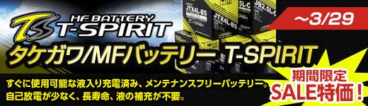 購入後すぐに使用可能、メンテナンスフリーバッテリー!